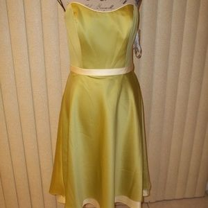 ALFRED ANGELO KIWI/BUTTER BRIDESMAID DRESS SIZE 14